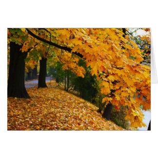 Golden Autumn Trees Card