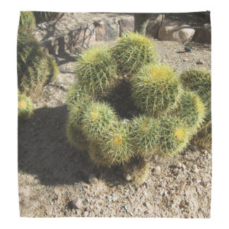 Golden Barrel Cactus Kerchiefs