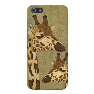 Golden Bronze Giraffes i iPhone 5/5S Cover