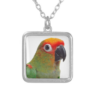 Golden-capped conure silver plated necklace