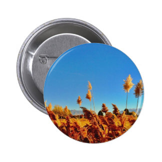 Golden country field blue skys button