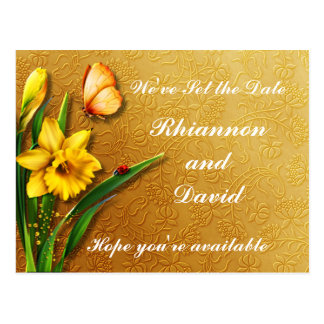Golden Daffodils Postcard