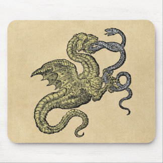Golden Dragon and Snake Mouse Pad
