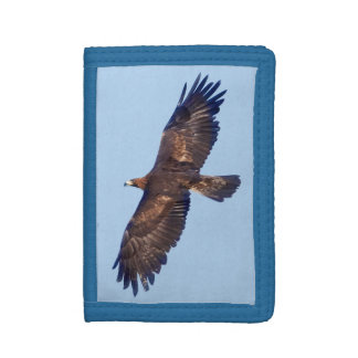 Golden Eagle in Flight Wallet
