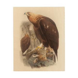 Golden Eagle John Gould Birds of Great Britain Wood Prints