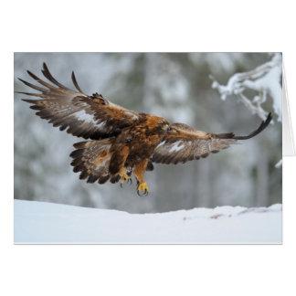 Golden Eagle photo Card