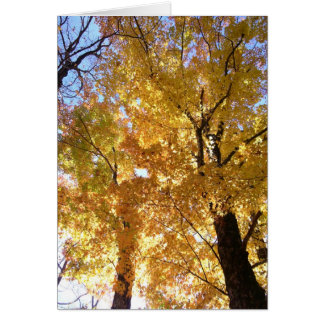Golden Fall Leaves Blank Note Card