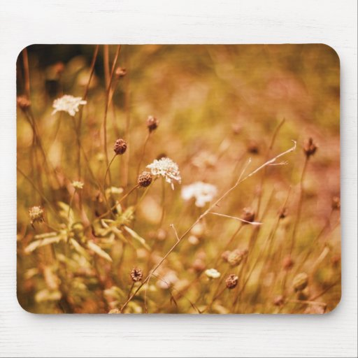 Golden field and wildflowers mouse pads