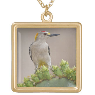 Golden-fronted Woodpecker adult male perched Gold Plated Necklace