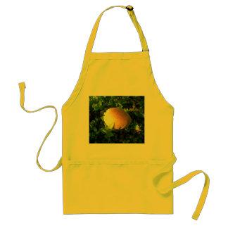 Golden Fruit Adult Apron