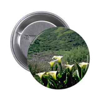 Golden Gate Nat l Recreation Area - Calla Lilies P Pinback Buttons
