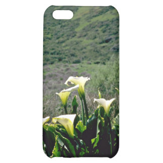 Golden Gate Nat'l Recreation Area - Calla Lilies P iPhone 5C Covers