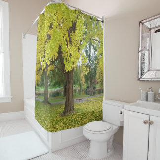 Golden Gingko Tree in the Fall Shower Curtain