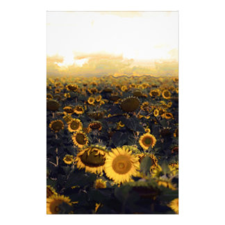 Golden Glow Sunflower Scape Stationery
