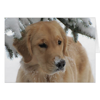 Golden Happy Holidays Greeting Card