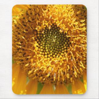 Golden Hues mousepad
