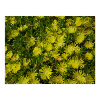 Golden Ice Flowers Yellow Floral Poster