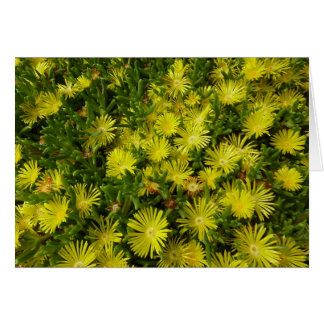 Golden Ice Plant Yellow Flowers Greeting Card