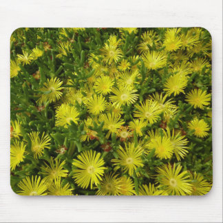 Golden Ice Plant Yellow Flowers Mouse Pad