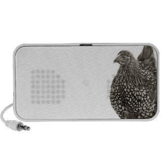 Golden Laced Wyandotte Chicken iPhone Speakers