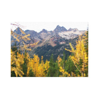 Golden Larch Canvas Print