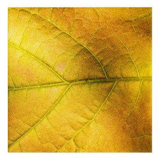 Golden Leaf Acrylic Wall Art