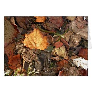 Golden Leaf Card