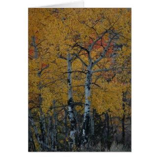 Golden Leaves of the Aspen Card