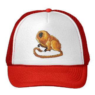 golden lion tamarin cap