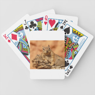 Golden Mantled Ground Squirrel Bicycle Playing Cards