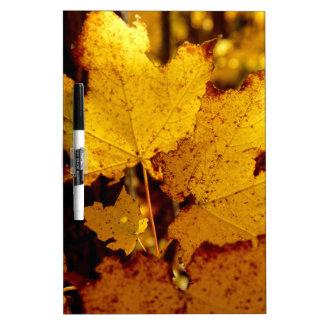 Golden Maple Leaves on St Joseph Island Dry Erase Board
