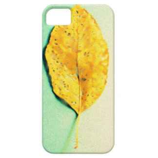 Golden Mint by JP Choate Case For The iPhone 5