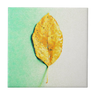 Golden Mint by JP Choate Ceramic Tile