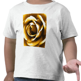 Golden Moments_ Shirts