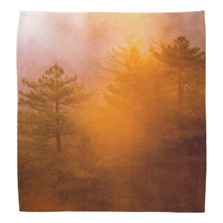 Golden Morning Glory Forest Bandanna