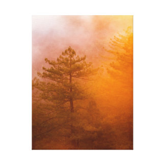 Golden Morning Glory Forest Canvas Print