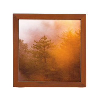 Golden Morning Glory Forest Desk Organiser
