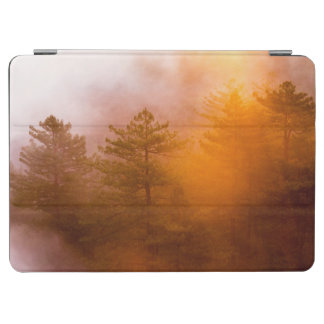 Golden Morning Glory Forest iPad Air Cover