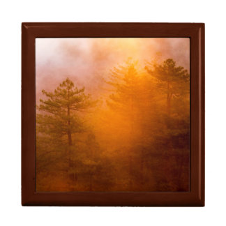 Golden Morning Glory Forest Large Square Gift Box