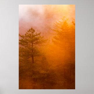 Golden Morning Glory Forest Poster