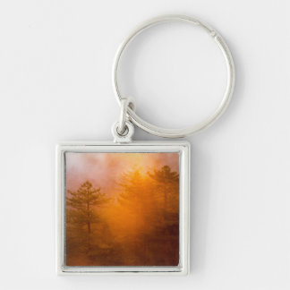 Golden Morning Glory Forest Silver-Colored Square Key Ring