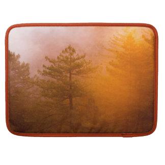 Golden Morning Glory Forest Sleeve For MacBook Pro