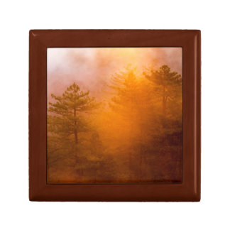 Golden Morning Glory Forest Small Square Gift Box