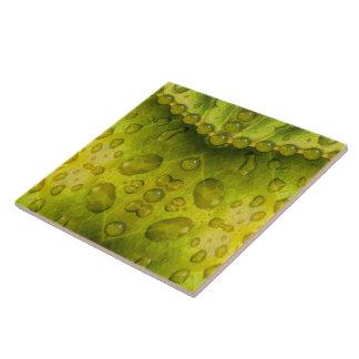 Golden Olive Envelope Large Square Tile