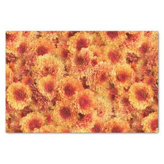 Golden Orange  Chrysanthemums Tissue Paper