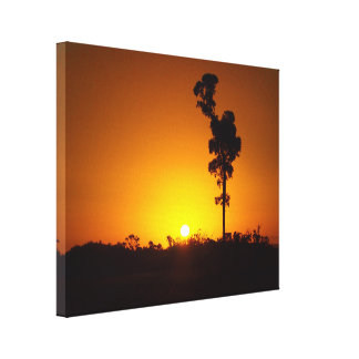 Golden outback sunset canvas print