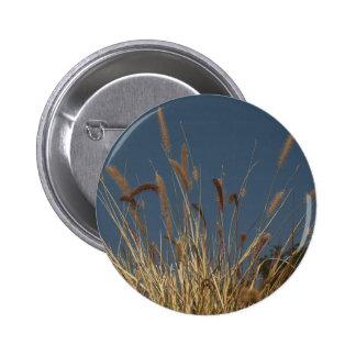 Golden Plant on Dark Sky Buttons