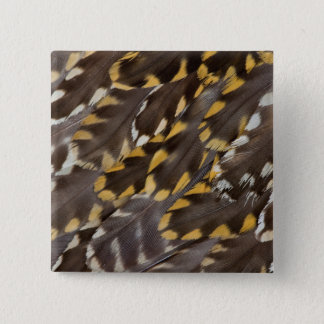 Golden Plover Feathers 15 Cm Square Badge