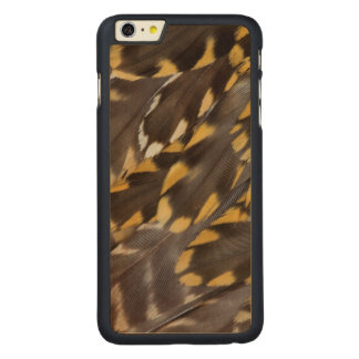 Golden Plover Feathers Carved Maple iPhone 6 Plus Case