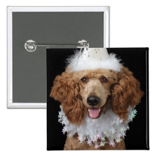 Golden Poodle Dog wearing a white clown costume Pinback Buttons